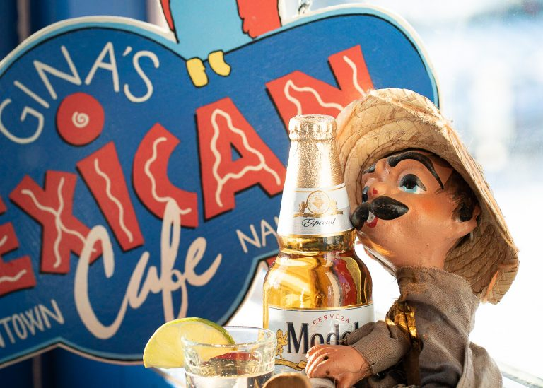 Gina's Pedro Drinking a Mexican Beer